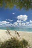Freeport beach, Grand Bahama Island. Bahamas Royalty Free Stock Photos