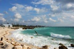 Freeport Shore. Rocky beach next to Freeport on Grand Bahama Island, The Bahamas Royalty Free Stock Image