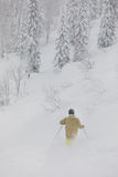 Freeride滑雪者在森林里 免版税库存图片