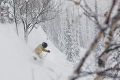 Freeride滑雪者在森林里 库存照片