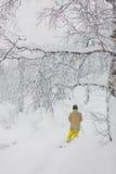 Freeride滑雪者在森林里 库存图片