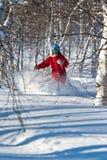 Freeride em Sibéria fotografia de stock