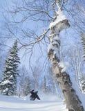 Freeride em Sibéria Fotografia de Stock Royalty Free