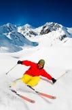 Freeride na neve fresca do pó Imagem de Stock