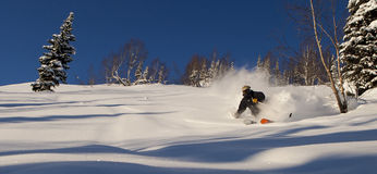 Freeride in Siberia Royalty Free Stock Image