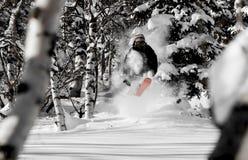 Freeride in Siberia Royalty Free Stock Image