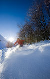 Freeride skier. Young male freeride skier goes down in powder snow. Backlight, vertical frame, rear view, snowy woods, red jacket Royalty Free Stock Photos