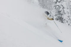 Freeride skier in the forest. Freeride skier with rucksack running downhill in freeze motion of snow powder Stock Photo