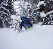 Freeride skier skiing in deep powder snow Royalty Free Stock Photo