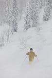 Freeride-Skifahrer im Wald Lizenzfreie Stockbilder