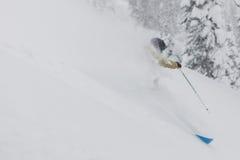 Freeride-Skifahrer im Wald Stockfoto