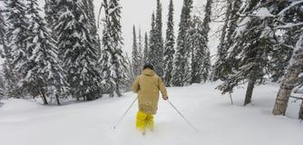 Freeride-Skifahrer im Wald Lizenzfreie Stockfotos