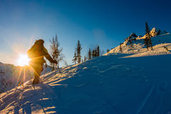 Freeride skis uphill backlit rising a sun. Freeride skis uphill backlit rising acsun Royalty Free Stock Image