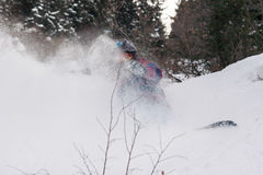 Freeride snowbord on fresh snow Stock Image