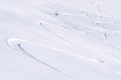 Freeride tracks on powder snow Royalty Free Stock Photo