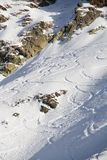 Freeride, tracks on a slope. Royalty Free Stock Image