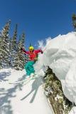 Freerider skiër springt van een rots van sneeuw in bomen in de bergen stock foto's