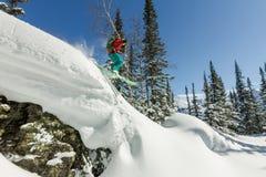 Freerider skiër springt van een rots van sneeuw in bomen in de bergen stock afbeeldingen