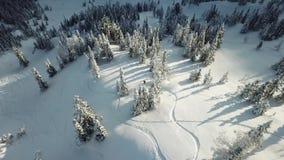 Freerider snowboarderdaling van de satellietbeeldhommel in poedersneeuw stock footage