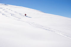 Freeriding on fresh powder snow. One person skiing downhills off piste on snowy slope in the italian Alps, with bright sunny day of winter season. Thick Powder Stock Image