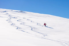 Freeriding on fresh powder snow. One person skiing downhills off piste on snowy slope in the italian Alps, with bright sunny day of winter season. Thick Powder Royalty Free Stock Image