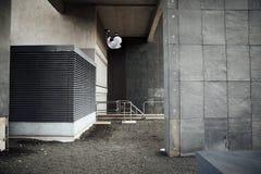 Freerunner sur les dessus de toit Image stock