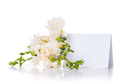 Freesia and a blank card Stock Images
