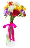 Freesia and daffodil  flowers Stock Photo
