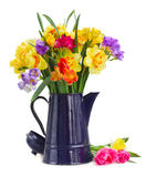 Freesia and daffodil  flowers. Blue and yellow freesia and daffodil  flowers  in blue pot  isolated on white background Royalty Free Stock Photography