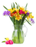 Freesia and daffodil  flowers. Blue and yellow freesia and daffodil  flowers  in glass vase  isolated on white background Royalty Free Stock Photos