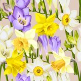 Freesia and daffodil vector seamless background Stock Photo