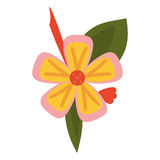 Freesia flower tropical icon. Vector illustration eps 10 Stock Photography