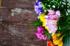 Freesia flowers Royalty Free Stock Photo