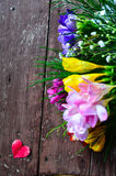 Freesia flowers Stock Images