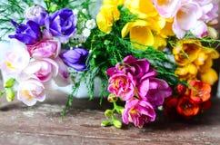 Freesia flowers Royalty Free Stock Photos