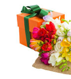 freesia flowers with gift box Royalty Free Stock Image