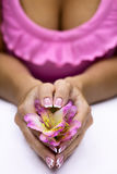 Freesia in  hands Stock Photo
