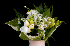 Freesia and Lily. Royalty Free Stock Photos