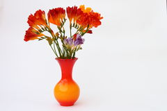 Freesia in vase. Fresh freesia in orange vase Royalty Free Stock Image