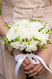 Freesias de mariage Images libres de droits