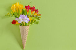 Freesias flowers in  waffles Stock Photos