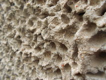 Freestone. Closeup of a rough structured freestone wall Stock Images