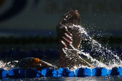 Freestyle 002. A freestyle swimmer is light up while swimming down the lap lane Royalty Free Stock Image