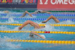 Freestyle Final  Budapest 2010 Royalty Free Stock Photos