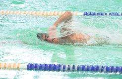 Freestyle man. Swimmer doing freestyle at national trials Royalty Free Stock Photo