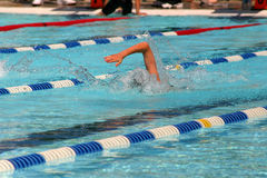 Freestyle race. A person swims in a race Royalty Free Stock Photo