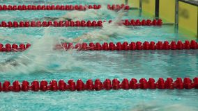 Freestyle race. Sport swimming the turn close to stock footage