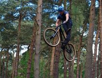 Freestyle  Stunt Cyclist in mid air with trees in background. Stock Photo
