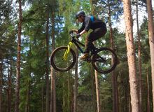 Freestyle  Stunt Cyclist in mid air very high with trees in background. Stock Images