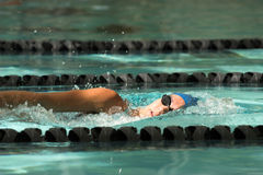 Freestyle swimmer. Female swimmer swimming freestyle stroke Stock Image